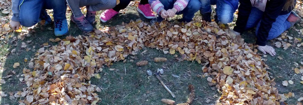 Druháčci využívají dary podzimu